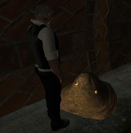 Mr. P. examines the mound
